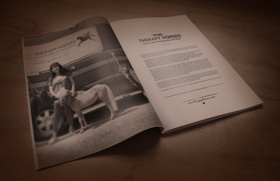 MiniMagazine3